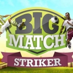 Big Match Striker Screenshot