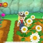 Harvest Moon: A New Beginning Screenshots