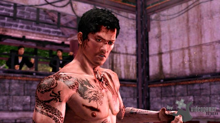 Sleeping Dogs Add-On Now Available