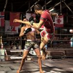 | Supremacy MMA screenshots